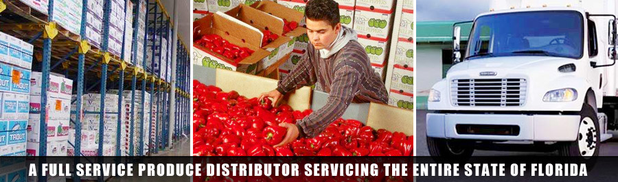 Full Service Produce Distributor Servicing Florida